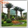 Alberi artificiali decorativi esterni all'ingrosso della palma da datteri della palma dei fornitori