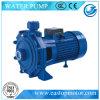 Cpm-1 Diaphragm Pumps para a agua potável com Castiron Body