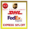 DHL UPS Fedex de Diensten van de Vracht