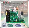 Abfall-Aufschüttung-Energie, die Biogas-Generator-Set für Verkauf 30 Kilowatt festlegt---600 Kilowatt