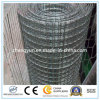 Guter QualitätsGalvaized beschichteter geschweißter Maschendraht mit ISO9001