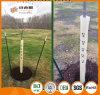 Protezioni dell'albero/ripari esterni albero della pianta