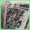 Alto Polished Marble Jade Kirin para Wall Tile Flooring Tile