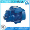 Cp Circulation Pump para Chemical Industry com Castiron/Brass/AISI304ss Support