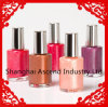 Nail di vetro Polish Bottle con Cap e Brush Made in Cina