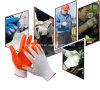Gants de nitriles/gants fonctionnants/gants de construction/industrie