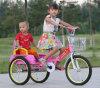 Passeio ao ar livre dos brinquedos das crianças do triciclo dos miúdos no carro