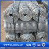 Campo della fabbrica della Cina che coltiva la rete fissa della rete metallica