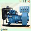 générateur silencieux de gaz naturel de 12kVA 60Hz