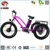 De Elektrische Autoped Met drie wielen van 3 Wiel van de Reis van de familie voor Jonge geitjes