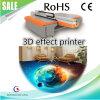 stampante a base piatta UV di effetto visivo 3D