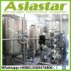Preço puro do tratamento da água da instalação fácil da membrana de Hydranautics