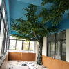 Arbre artificiel faux de Ficus