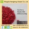 Polisacárido popular de Wolfberry chinês Goji
