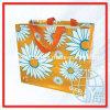 Sacos de compra tecidos PP (ENV-PVB021)