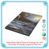 Stampa manuale del libro del libro di stampa del libretto manuale Softcover degli opuscoli