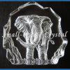 Iceberg cristalino del elefante 3D (BS0005)