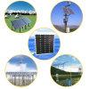 comitato fotovoltaico di PV di energia solare di 200W Sun
