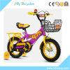유아 자전거를 위한 소형 스포츠 자전거가 아이 세발자전거에 의하여 농담을 한다