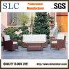 Sofa-Möbel/im Freiensofa-eingestelltes/Handelsschnittsofa/Sofa-Vorwähler (SC-B1001)
