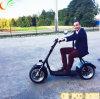 Motocicleta eléctrica verde de la vespa que viaja de los Cocos eléctricos de la ciudad