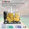 Conjunto de generador continuo famoso del biogás del trabajo del mundo