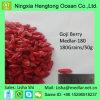 Ar chinês baga orgânica secada de Goji da venda de Hor 100% natural