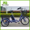 中国の工場供給の最もよい3つの車輪の電気貨物バイク