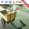 3人の車輪の子供の電気貨物バイクのための価格
