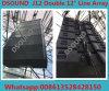 Format-Konzert-Dreiwegezeile Reihen-System des DB-J12 großes Doppelt-12