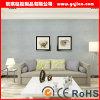 Murales abrigo, vinilo Wallcovering, papel pintado de encargo de la pared del vinilo