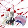 Комплект Manicure набора заполированности геля поставщика подгонянный поставкой