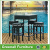 Outdoor Chaise de bar en meuble de jardin PE Rattan (GN-8678D)