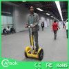 Nuevo concepto que balancea el carro eléctrico Ca1300