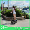 Form Transportation 42V Battery Electric Chariot