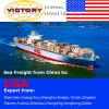 Transporte da expedição/recipiente de FCL&LCL de China ao EUA-Transporte