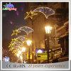 Luz de queda da corda do diodo emissor de luz da decoração maravilhosa do jardim da rua do Natal do festival
