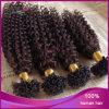 Extensão ligada pre barata Curly indiana do cabelo da ponta do prego