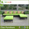 Sofa extérieur moderne de salon de rotin de meubles en osier bon marché de jardin