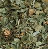 Extracto de la hierba de Lophatherum
