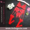 Комплект G-Шнура пояса подвязки чулков шнурка женщин сексуальный (DY01-027c)