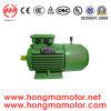 Motor de la C.C./motor de inducción electromágnetico trifásico del freno con 0.55kw/4poles