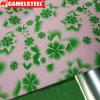 Zink beschichtetes PPGI prägte Farbe beschichteten Stahlring
