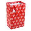 Bolso de papel del regalo de la decoración (XG-PB-085)