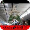 Luzes da decoração da estrela do diodo emissor de luz do Natal