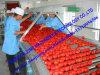 Máquina de processamento quente da pasta de tomate da ruptura do saco asséptico