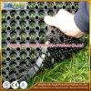 estera anti del caucho del resbalón de la estera de goma a prueba de ácido de goma hueco de la estera de 800*800m m
