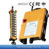 Radio sans fil de grue à télécommande (F21-20D)