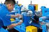 Máquina barata chinesa da formação fria da CZ