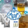 Testosteron Undecanoate für den Muskel, der 5949-44-0 Andriol das Steroid aufbaut